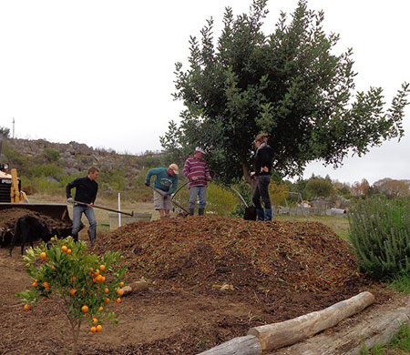 Humus and Compost heap being built.