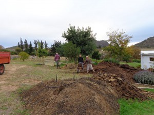 Guys working on composting project.