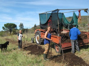 Workaway volunteers on farm.